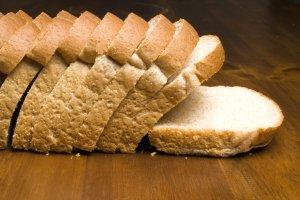 Segundo Dr. Bactéria, comer alimentos com bolor traz riscos à saúde